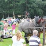 Paard & Erfgoed 2 sept. 2012 (32 van 212)