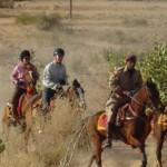 Paardenpas India