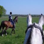 Te paard met de NRSV (1)